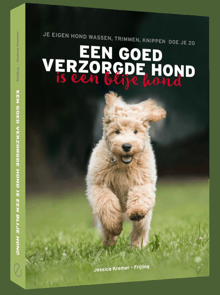 Goed-verzorgde-hond-3D-766x1024